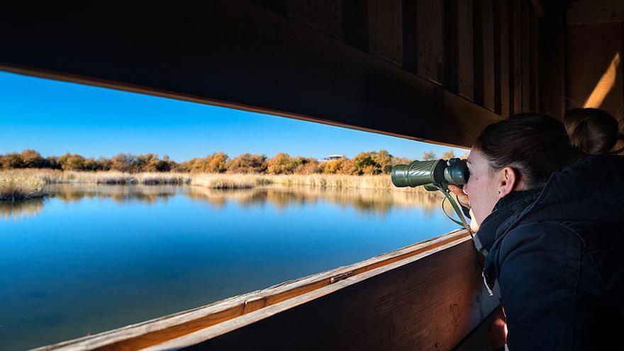 Las Tablas de Daimiel FOTO: Turismo Castilla-La Mancha
