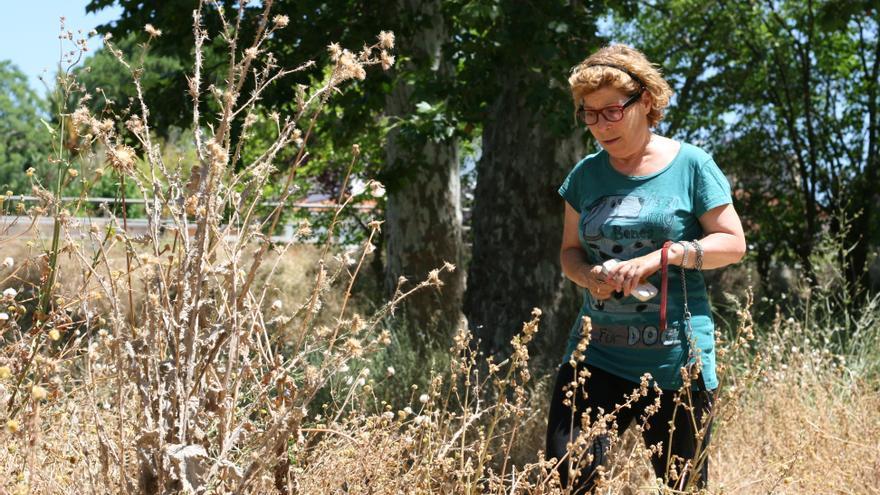 María José Elías, en el parque del barrio Las Moreras, invadido por la maleza