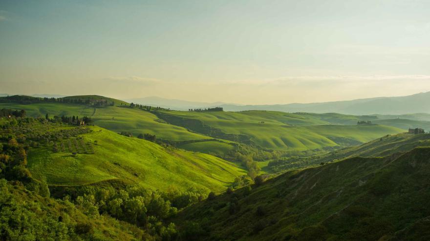 Los campos de la Toscana en primavera.