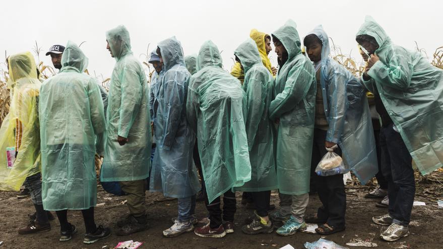 Refugiados de Afganistán esperan a cruzar a Croacia en el paso fronterizo de Bapska, en Serbia / Achilleas Zavallis - MSF