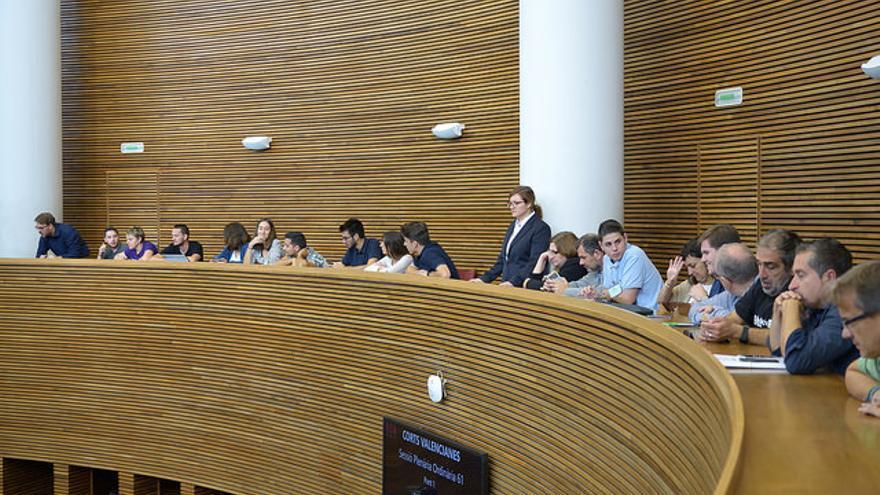 Diversos colectivos juveniles asisten al pleno de aprobación de la Ley de Juventud