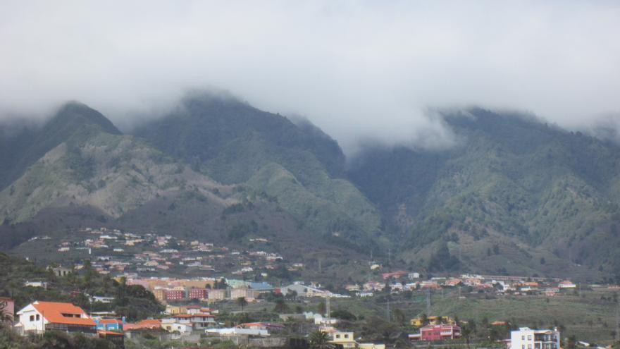 El castaño, como se aprecia en la imagen, ha colonizado las lomos de Breña Alta. Foto: LUZ RODRÍGUEZ.
