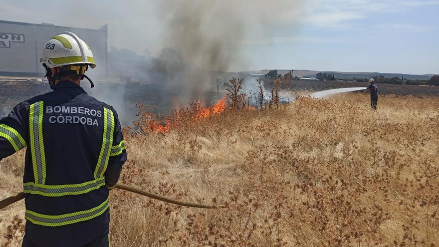 Arde una zona de pastos en Las Quemadas