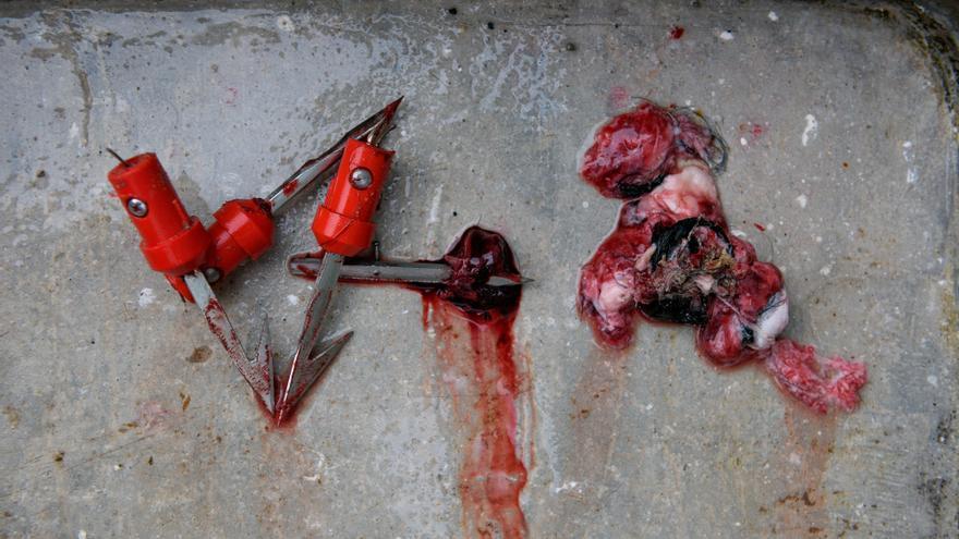 Trozos de los cuerpos de los toros se mezclan con los útiles empleados tras la lidia. Foto: Askekintza/Tras Los Muros