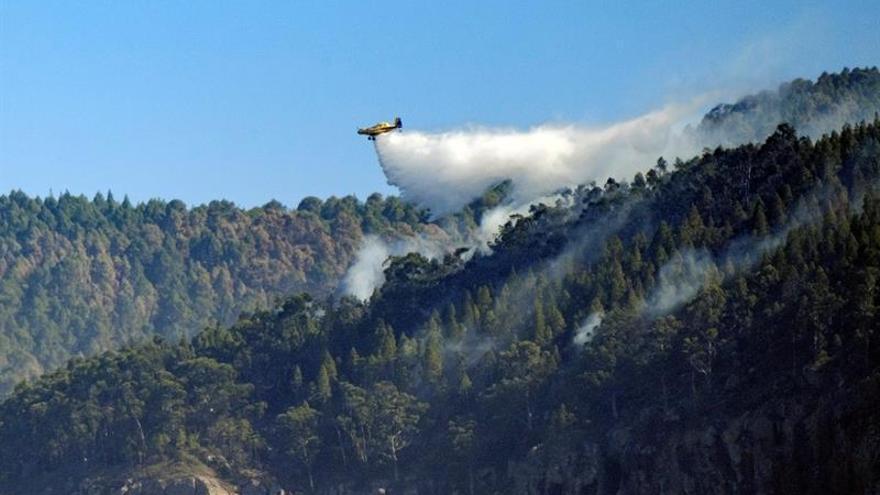 Medios aéreos descargan agua sobre el Parque Natural de Tamadaba, en el municipio de Agate.