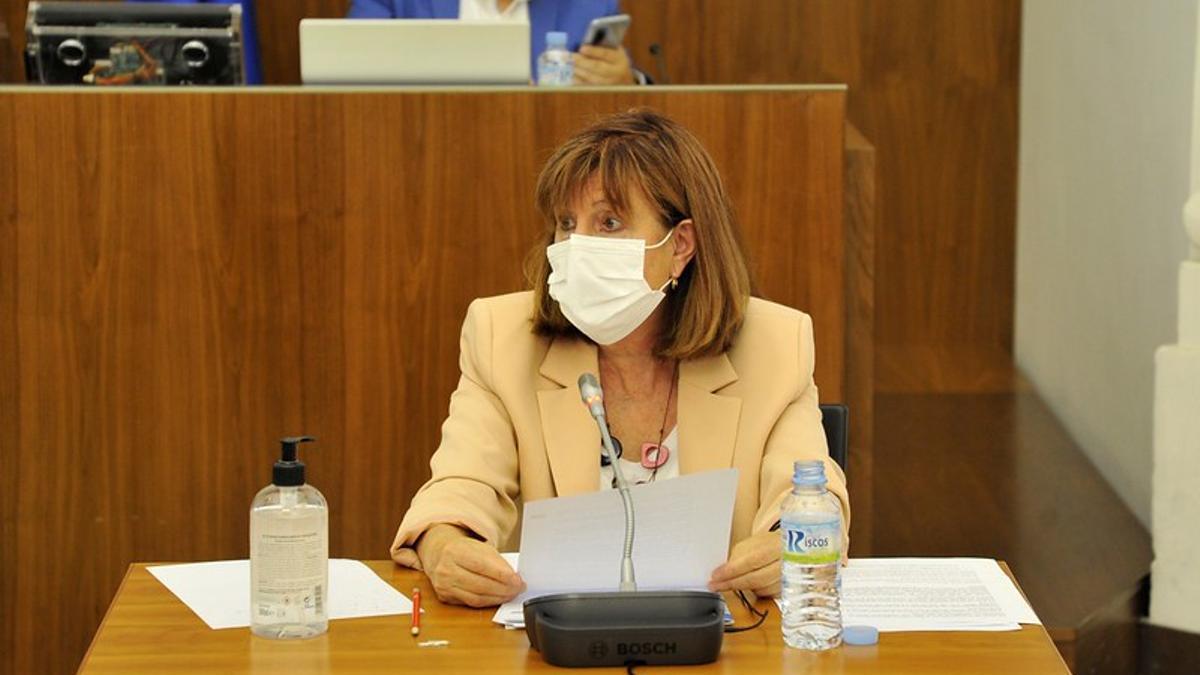 La directora general de Salud Pública, María Pilar Guijarro, este lunes en la Asamblea