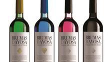 Botellas de vino Brumas de Ayosa, con el blanco afrutado con botella azul