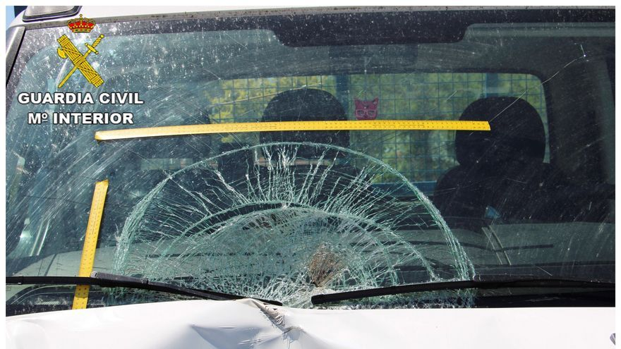 Localizan al conductor que atropelló mortalmente a un camionero en la N-VI