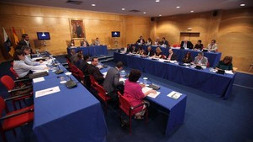 Pleno del Cabildo de Gran Canaria. (QUIQUE CURBELO)