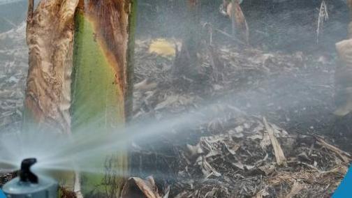 Imagen del programa de la 'Jornada agua regenerada para la  agricultura'