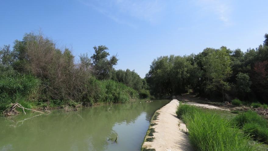 El Gobierno afirma que la autorización para la limpieza del Ebro en dos parajes de Tudela se concedió en 2014 y 2015