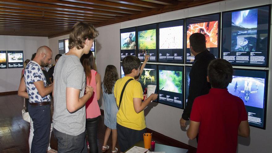 Las exposiciones han sido inauguradas en el Espacio Cultural de CajaCanarias.