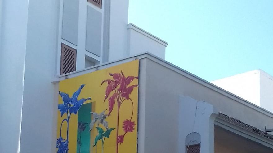Plantain, la nueva obra de Carmen Cólogan y que forma parte del Foro de Arte Contemporáneo la Ciudad en el Museo de Los Llanos de Aridane.