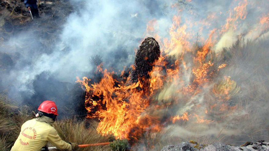 Incendios forestales devastan más de 13.000 hectáreas en Colombia