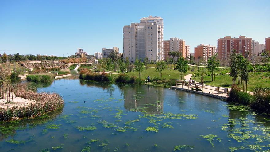 Marjal de ciudad en Alicante