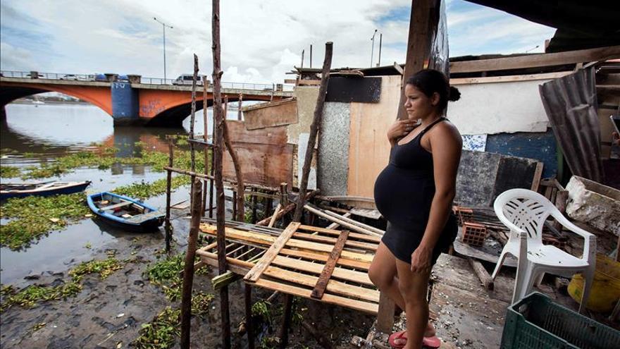 La directora de la OPS informará esta semana sobre el brote del virus del Zika