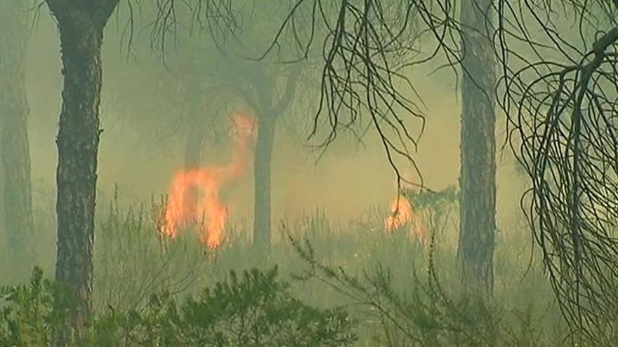 Ecologistas en Acción pide depurar responsabilidades en el incendio de Moguer