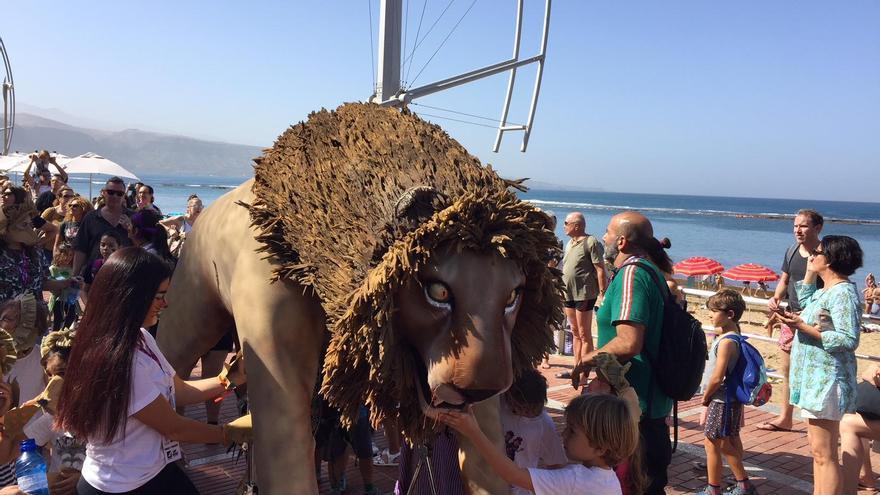 El león del WOMAD llega a la Playa de Las Canteras en un multitudinario Pasacalles.