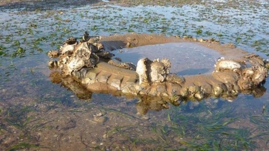 IH Cantabria impulsa un proyecto para detectar las zonas con más residuos del litoral cantábrico