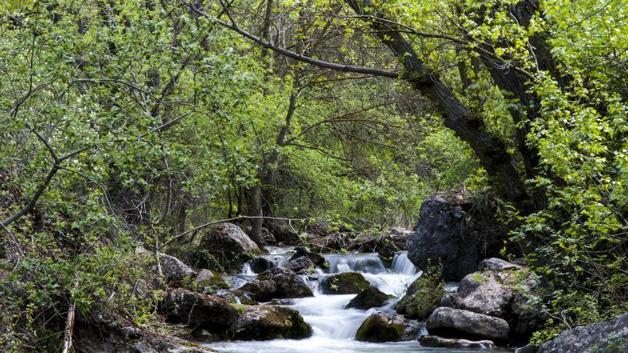 Se reactivan las rutas y actividades gratuitas abiertas al público en los espacios naturales de Castilla-La Mancha