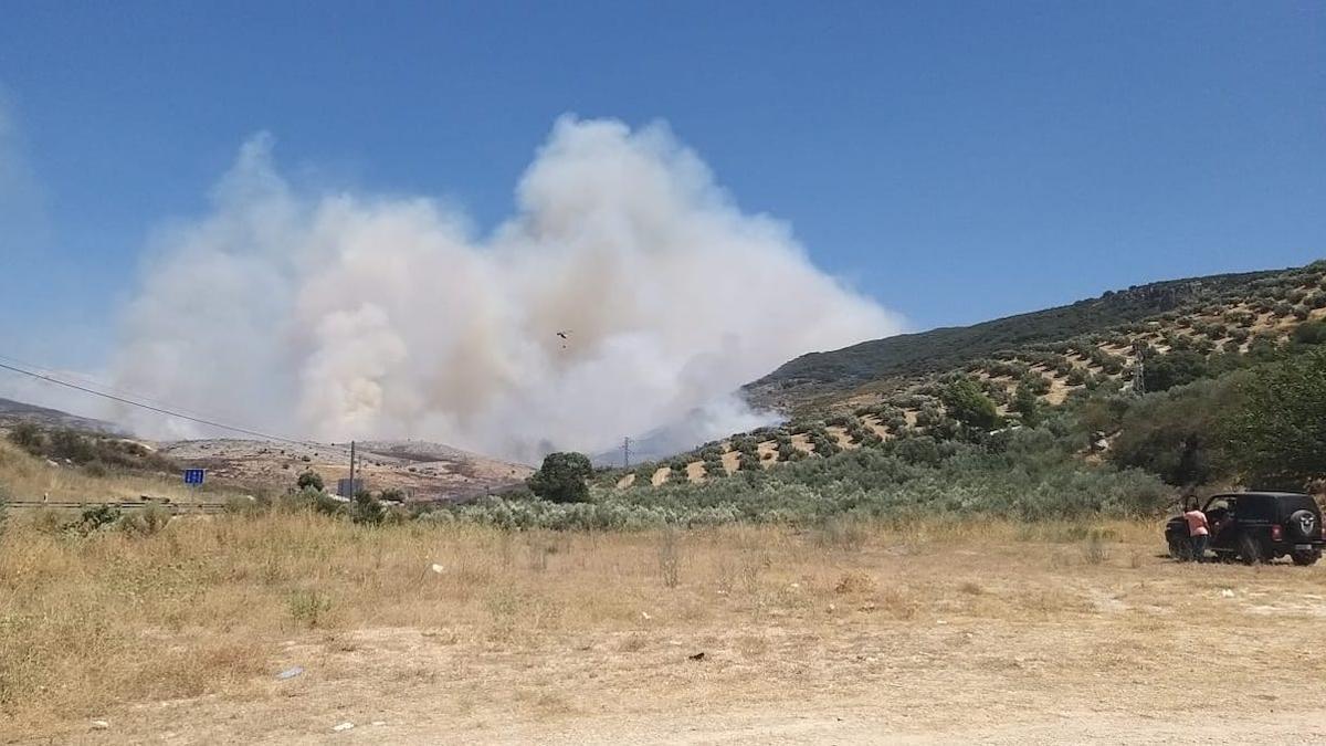 Labores de extinción del incendio en Cabra.
