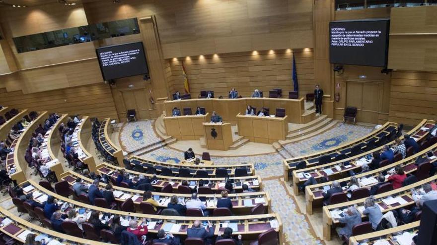 El Senado aprueba añadir el indicador de discapacidad en datos de maltrato del CGPJ