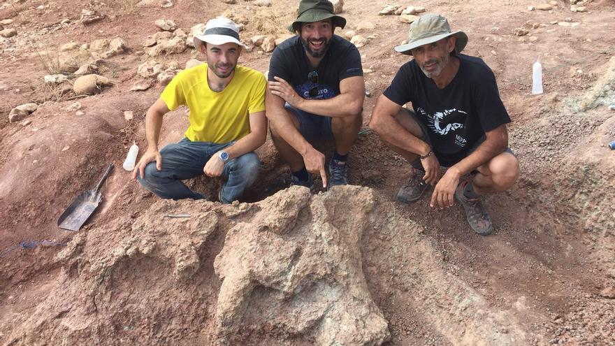 Húmero de un saurópodo en el yacimiento de Poyos, en Sacedón