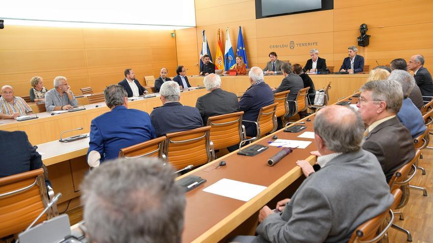 Imagen del salón de plenos con las personas convocadas este viernes en el Cabildo de Tenerife