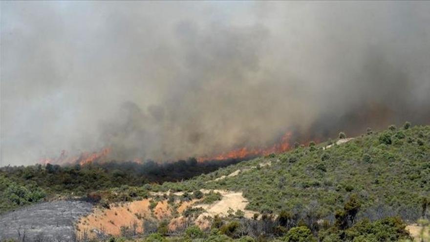Incendio en Aleas (Guadalajara), julio de 2014 / Foto: EFE