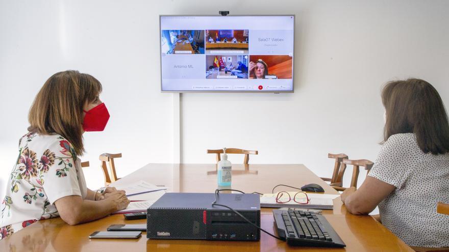 La Consejera De Empleo Y Políticas Sociales, Ana Belén Álvarez (Izda), Participa Por Videoconferencia En El Consejo Territorial De Servicios Ssociales Y Del Sistema Para La Autonomía Y Atención A La Dependencia