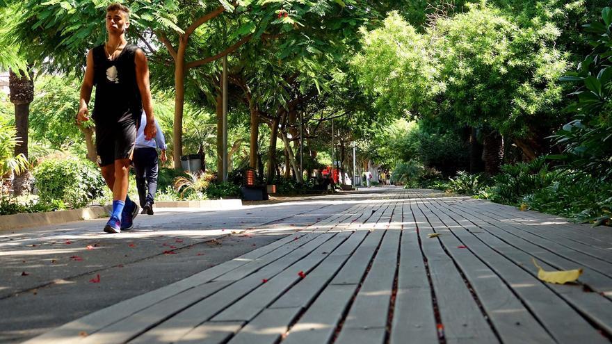 Parte de los paseos preparados con maderas que serán mejorados