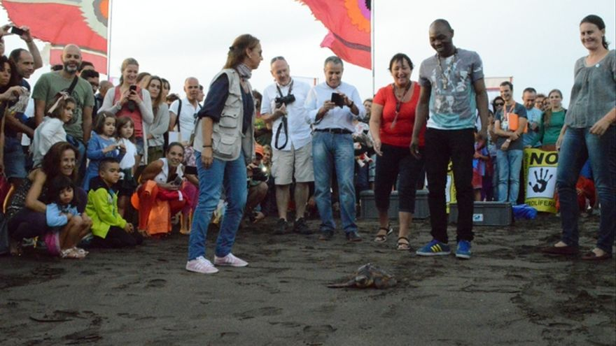 Seun Kuti suelta una tortuga con su nombre en la Playa de Gran Tarajal | Iago Otero Paz