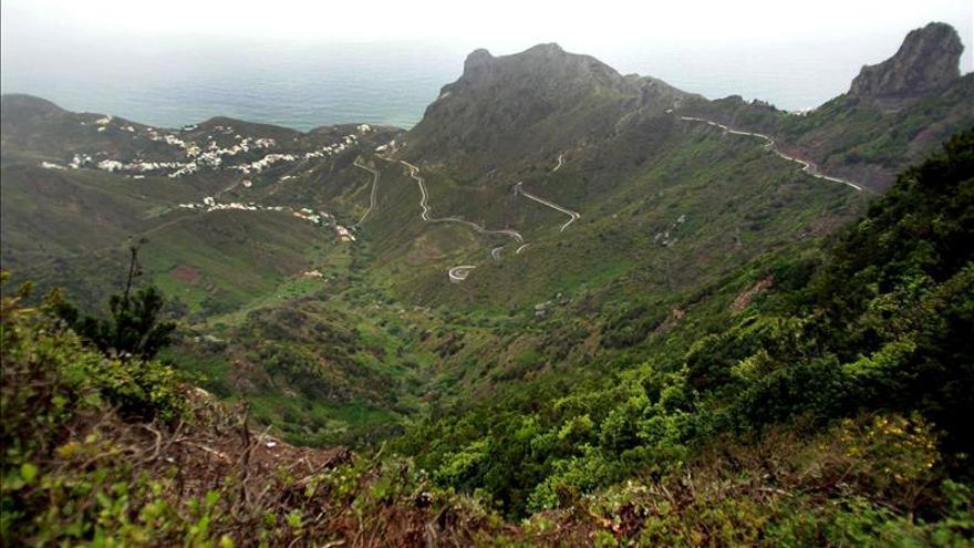 El macizo de Anaga alberga la mayor concentración de endemismos de toda Europa