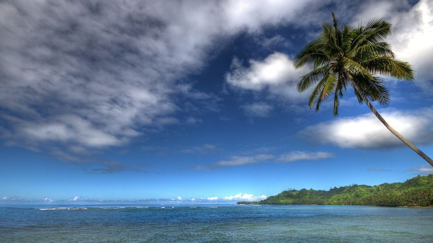 Cocoteros, buen tiempo y un mar cristalino: imagen habitual en las costas de Fiji. Björn Groß