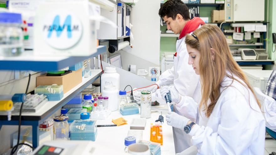 En la investigación del coronavirus trabajan dos investigadores senior, dos posdoctorales, cinco doctorandos y tres técnicos. / Álvaro Muñoz Guzmán, SINC