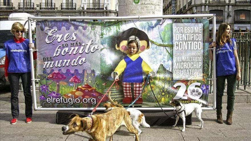 """El Refugio pide identificar a animales para estrechar el """"cerco"""" al maltrato"""