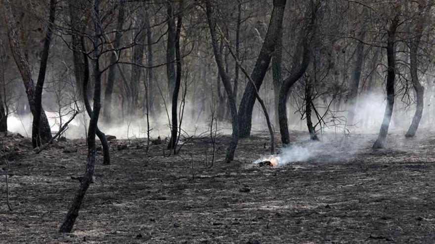 El incendio de Artés (Barcelona) sigue activo tras calcinar 250 hectáreas