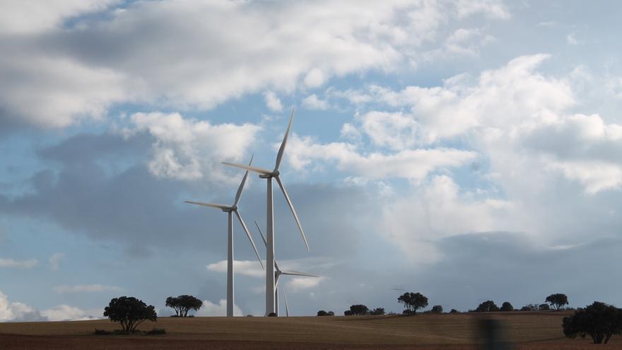 La CNMC certificará a las renovables el derecho al cobro de primas para evitar problemas financieros