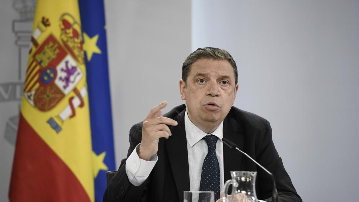 El ministro Luis Planas