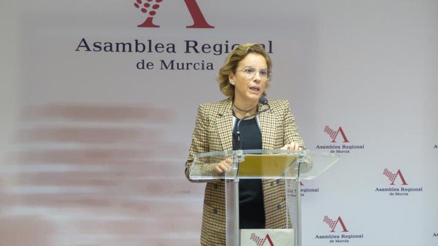 La consejera de Educación afirma que Murcia no puede revertir los recortes y propone ceder sus propias competencias al Estado
