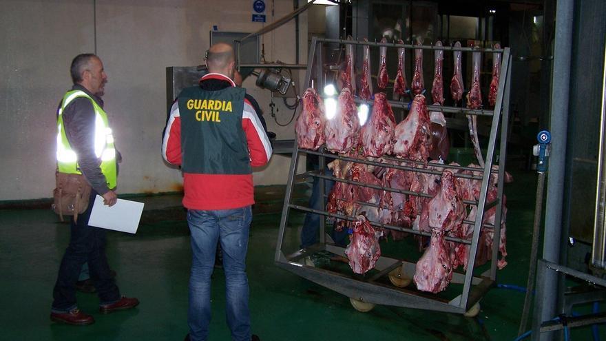 Desmantelada una trama en Galicia que introducía ganado robado en mataderos cárnicos