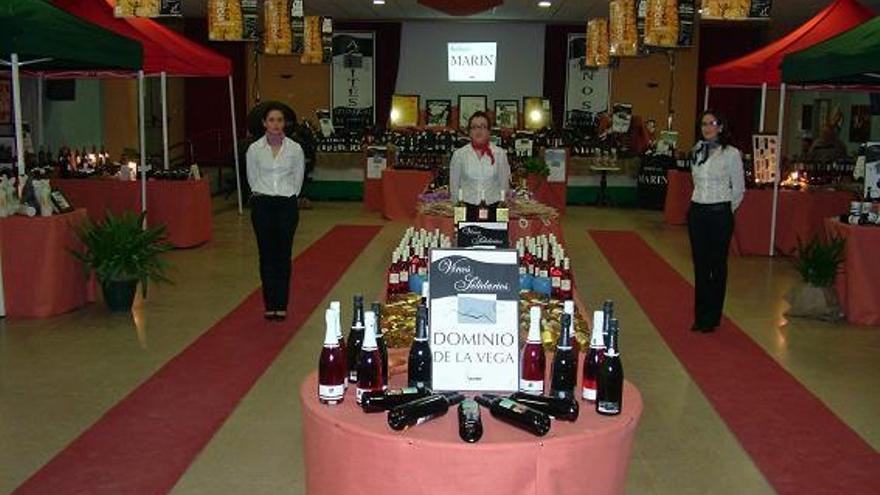 La asociación celebra actividades solidarias como la exposición de Vinos y Aceites Solidarios / Apapnidicsur