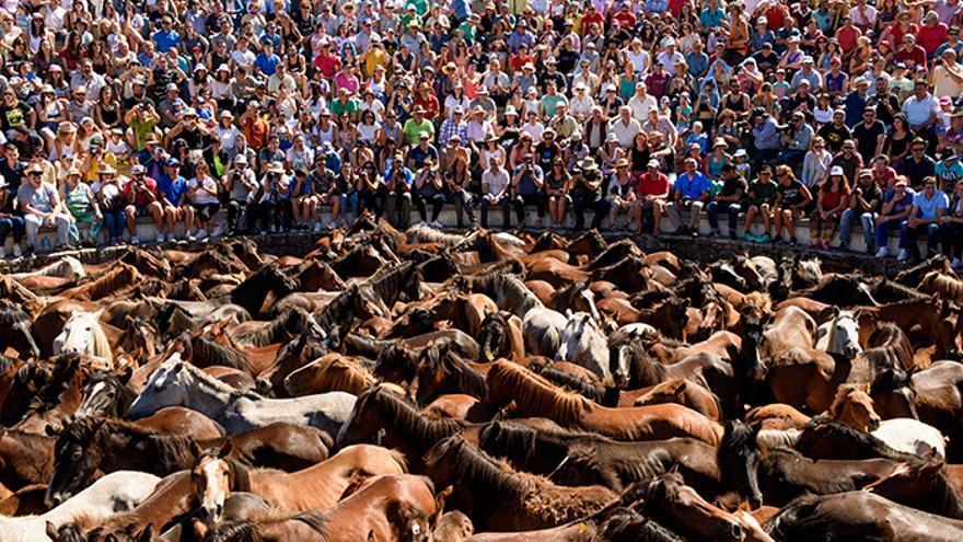 El 'curro' tiene capacidad para 1.500 personas. Foto: El caballo de Nietzsche