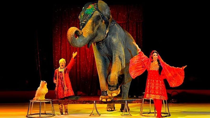 Espectáculo del Circo Quirós con un elefante encadenado