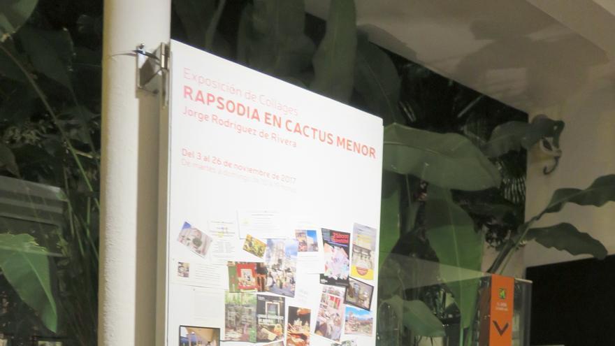 Rapsodia en cactus menor, una propuesta realizada exclusivamente para la Casa Museo Antonio Padrón