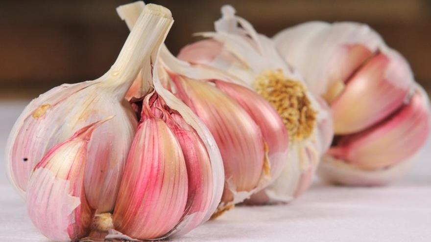 Investigadores estudian las bondades para el corazón del ajo morado de Las Pedroñeras