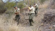 Retiran una jaula para la caza furtiva en el Parque Natural Cabo de Gata-Níjar