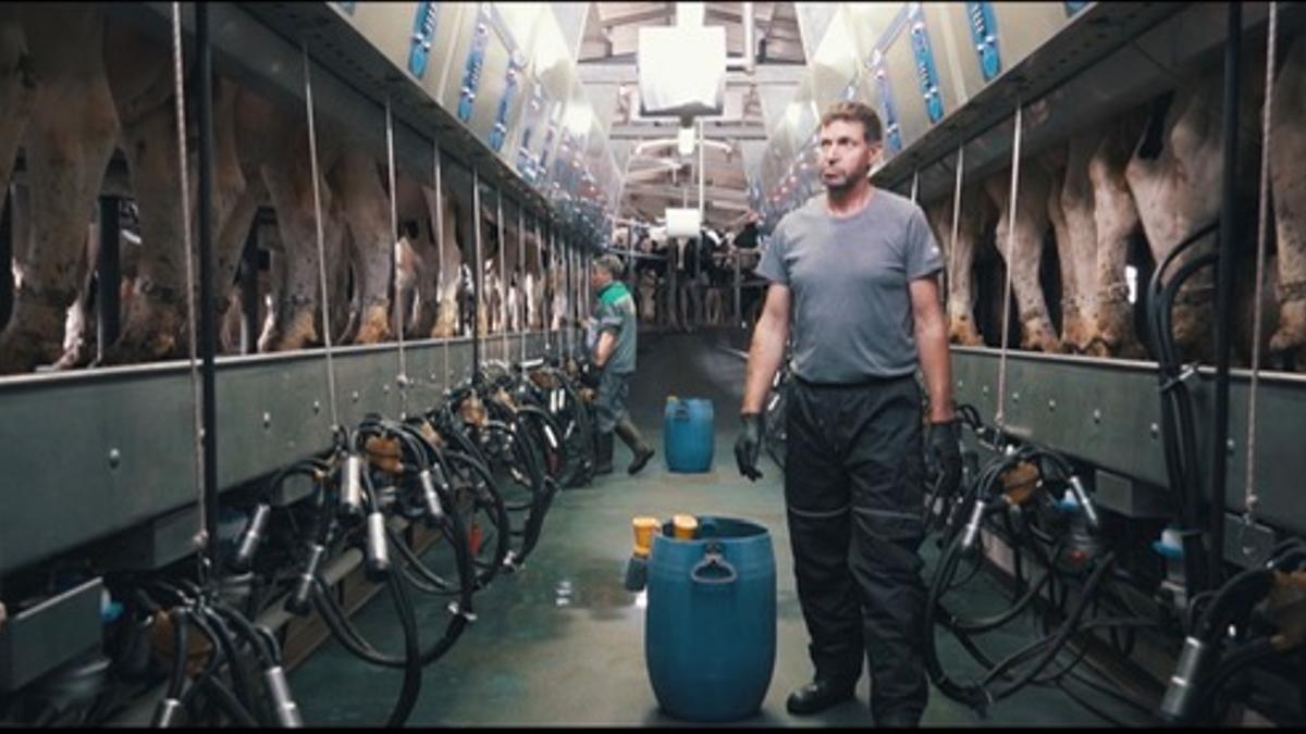 Una de las explotaciones ganaderas que produce leche A2