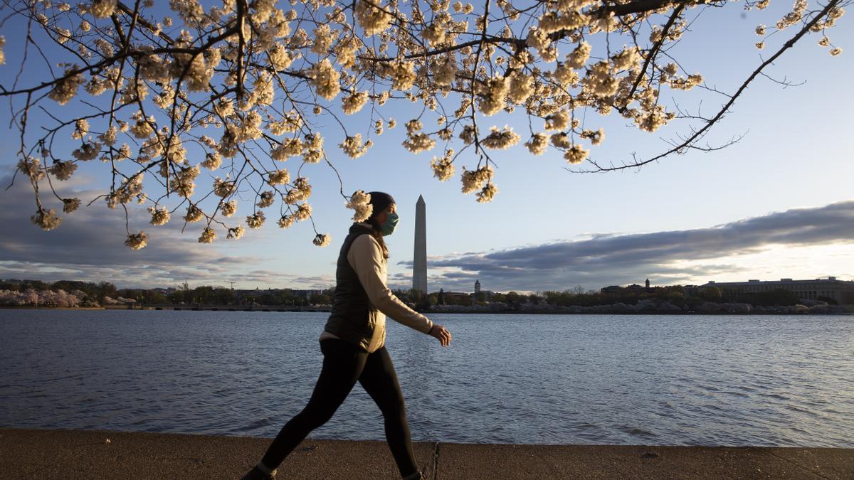 Una persona camina en Washington DC por la Cuenca Tidal