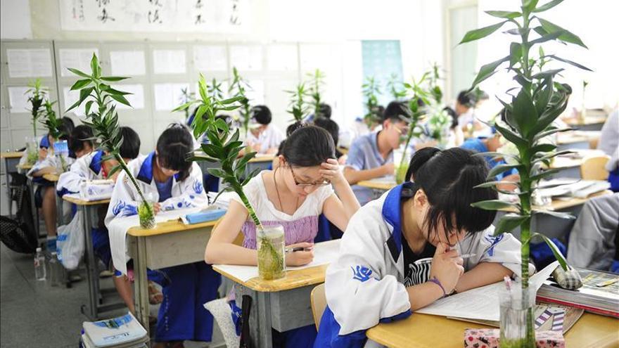 España empieza a consolidarse como destino para los estudiantes chinos
